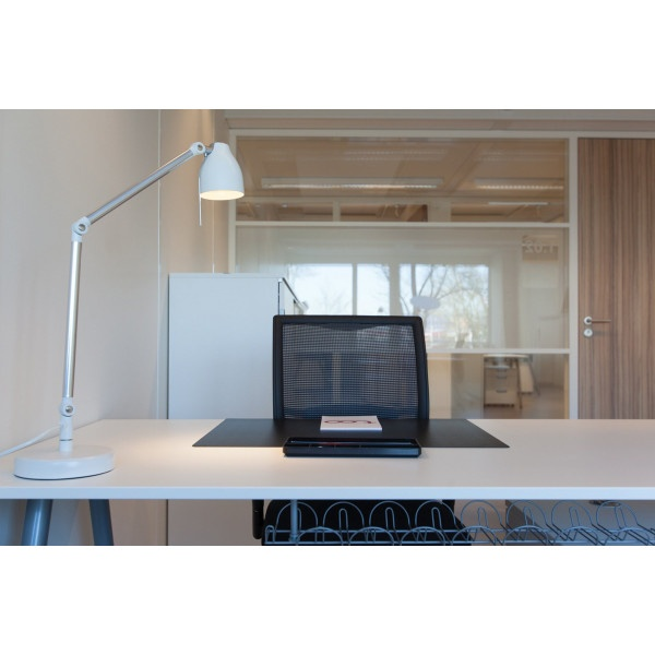 Delft - Whitepark - Virtual office