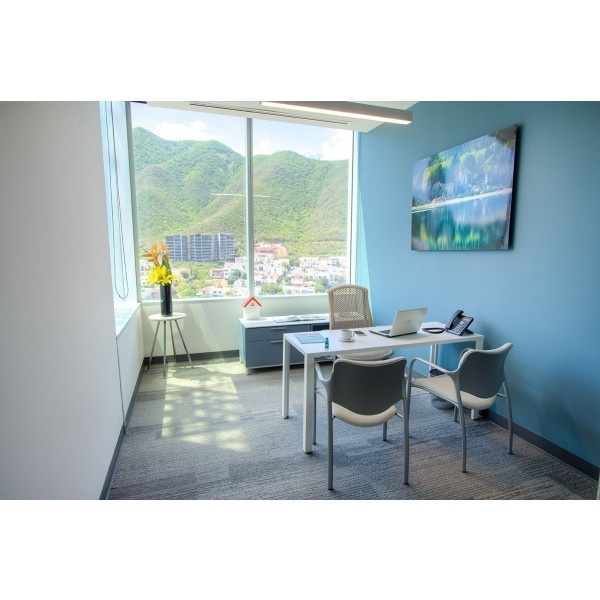 Monterrey - Torres Koi - Private Office